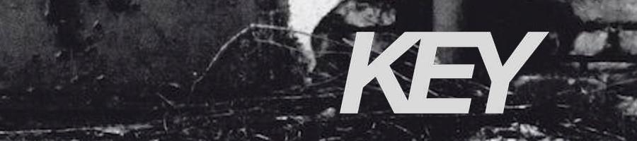 KEY Vinyl AUSGANG BORDER ONE CTRLS