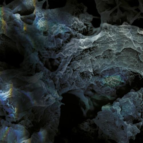 LSD | Third Process (LSD) - EP