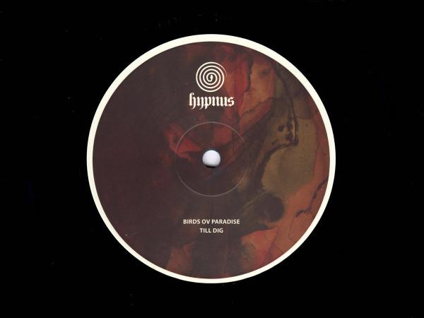 BIRDS OV PARADISE | Till Dig (Hypnus Records) – EP