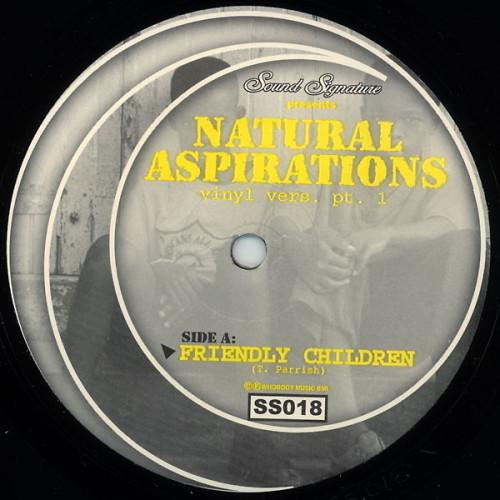 THEO PARRISH | Natural Aspirations - Pt. 1 (Sound Signature)