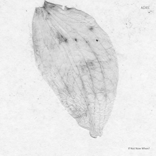 ADIEL | If Not Now When? (Stroboscopic Artefacts) - EP