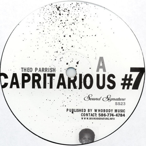 THEO PARRISH | Capritarious #7 / Levels (Sound Signature)