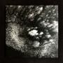 MARTIN NONSTATIC | Treeline (Ultimae Records) - 2xLP/DIGITAL