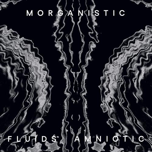 MORGANISTIC | Fluids Amniotic (Mote-Evolver) - 2xLP