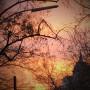 DEADBEAT | Waking Life (BLKRTZ) - 2xLP