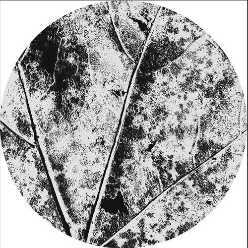 VÂYU | Nysiads (Affin LTD) - EP