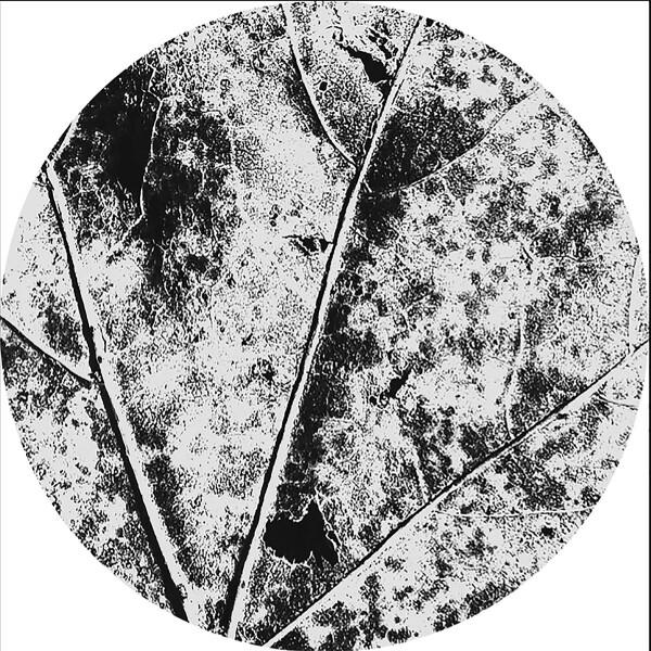 VÂYU | Nysiads (Affin LTD) – EP