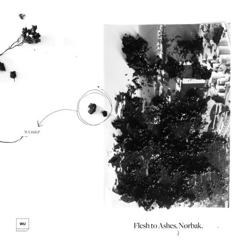 NØRBAK | Flesh To Ashes (Warm Up Recordings)