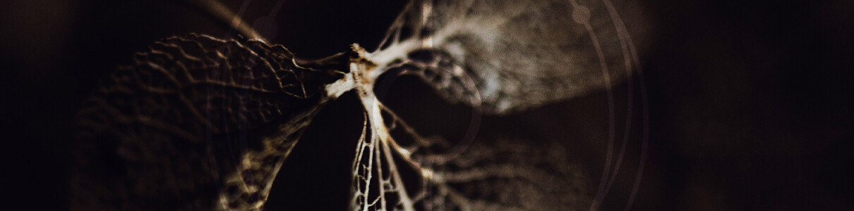 Natural Formations | mix by Christian Samsara – Showcase #005