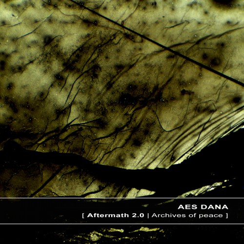 AES DANA | Aftermath 2.0 - Download 16/24bit (Ultimae Records)