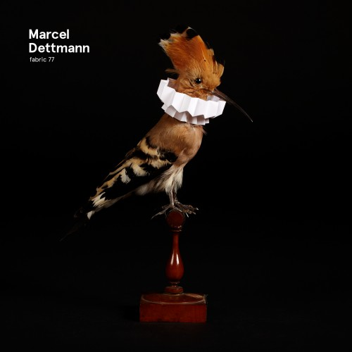 Fabric 77 | Marcel Dettmann - CD