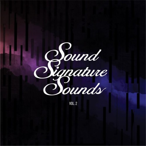 THEO PARRISH | Sound Signature Sounds Vol.2 - CD