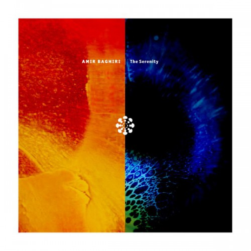AMIR BAGHIRI The Serenity (Databloem) - CD