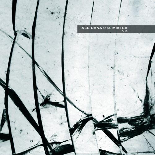 AES DANA feat. MIKTEK | Cut. - Download 16/24bit - Vinyl (Ultimae Records)
