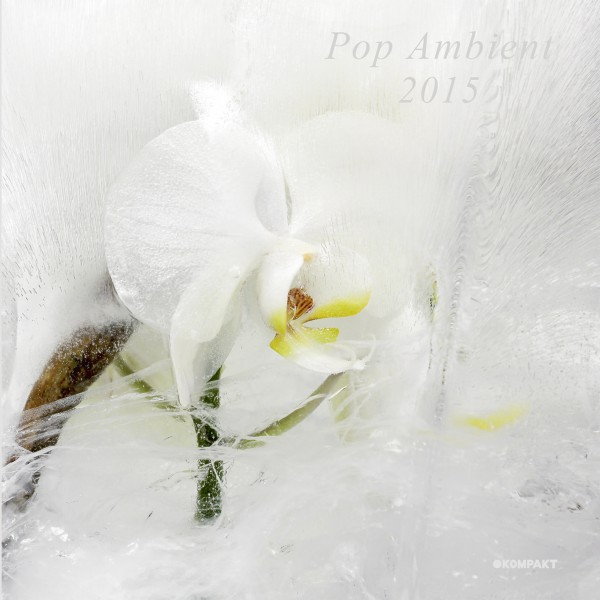 Pop Ambient 2015 – Various artists – ( Kompakt)