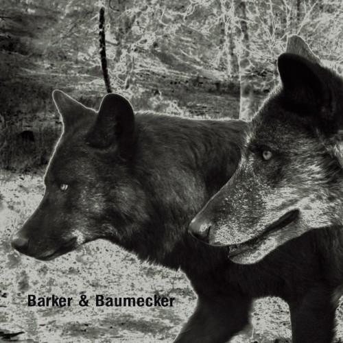 BARKER & BAUMECKER | Transsektoral (Ostgut Ton) - CD