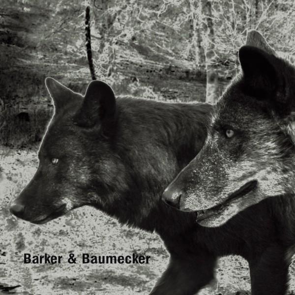 BARKER & BAUMECKER   Transsektoral (Ostgut Ton) – CD